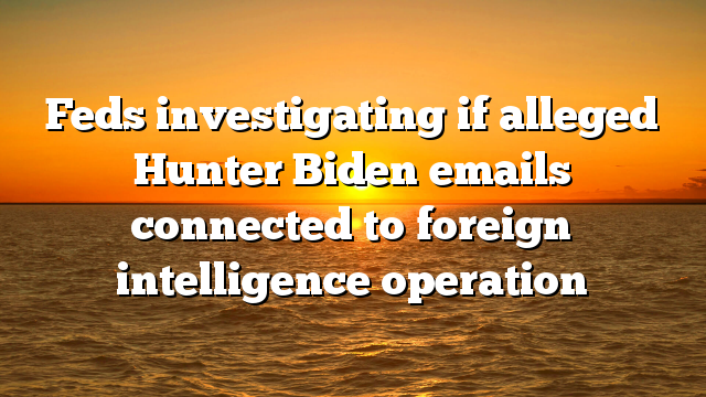 Feds investigating if alleged Hunter Biden emails connected to foreign intelligence operation